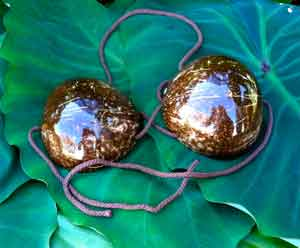 Coconut-Halves---Bra
