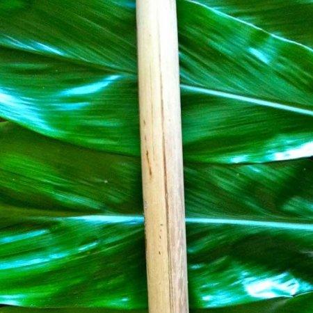 Pu-'ohe---Bamboo-Trumpet